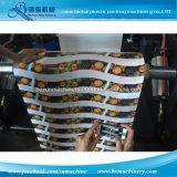 Machine d'impression à grande vitesse de Flexo de cuvettes de papier