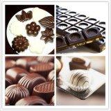 Serbatoio di fusione della macchina del cioccolato