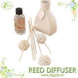Fragranza Stick Essential Oil Diffuser per Home Decoration
