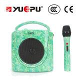 Amplificateur portatif sans fil portatif avec l'USB, l'écart-type et le microphone sans fil