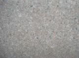 Azulejos Polished del granito de los azulejos de suelo del granito G681