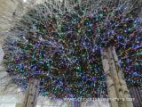 Luzes felizes da árvore do diodo emissor de luz da decoração do casamento