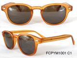 O círculo atrativo da forma molda óculos de sol do desgaste ocasional das mulheres do Cp