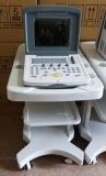 Voller Digital-beweglicher Veterinärultraschall (WHYC30P TIERARZT)