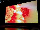 P6 colore completo LED che fa pubblicità alla visualizzazione di LED dell'interno dello schermo