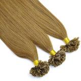 人間の毛髪の拡張倍によって引かれる前に結ばれたU先端の毛Lbh 036