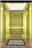 Le miroir de levage d'ascenseur de passager a repéré M. et LMR Aksen Hl-X-055