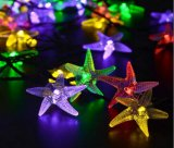 Lichte Zeester van het Koord van de zonneMacht de 20-geleide voor het nieuw-Jaar van het Huwelijk van Kerstmis links-Ss19