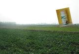 真新しい製品は穀物、ムギおよびマメ科植物穀物、Prothioconazoleの殺菌剤で適用する