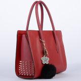 handbag (WP1005-3) 형식 여가 가죽 숙녀
