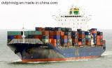 중국에서 미국에 대양 출하