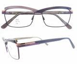 Nueva manera Eyewear del marco óptico del metal del último de los vidrios de los marcos nuevo de la llegada estilo de la manera para la mujer