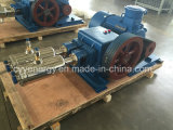 Cyyp 58 Uninterrupted Service Large Flow und High Pressure LNG Liquid Oxygen Nitrogen Argon Multiseriate Piston Pump