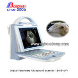 Veterinär4d Doppler Ultraschall-Scanner