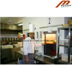 Ascenseur de Dumbwaiter de nourriture de cuisine avec 250kg