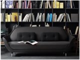 O sofá da fibra de vidro do assento de amor dois para a sala de visitas projeta (FS-001)