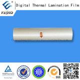 Лоснисто Pre-Glue пленка BOPP термально (35mic)