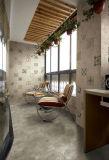 Mattonelle rustiche del pavimento non tappezzato della parete di pietra del cemento delle mattonelle (Sn6671-03)