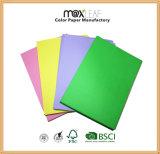 A4 색깔 필기 용지 /Copy 서류상 제조자