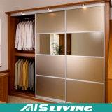 Поставщик высокого качества шкафа шкафа раздвижной двери дешевый (AIS-W039)