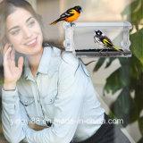 Grande alimentador acrílico 100% desobstruído do pássaro do indicador - com o copo da sução e embalagem fortes de Beaufiful