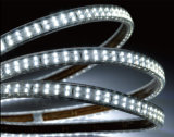 Luz de tira barata del precio los 60LEDs/M SMD5050 LED