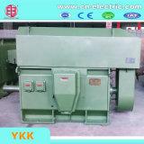 Ykkシリーズ高圧リスケージの誘導電動機