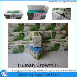 Hormona esteroide K I G-Tropin hectogramo 10iu del crecimiento humano del edificio 191AA del músculo