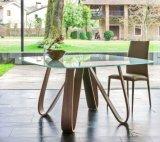 철 다리 (DT023)를 가진 가장 새로운 디자인 목제 베니어 최고 식탁