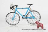 Mini bicicleta do modelo de escala para o presente