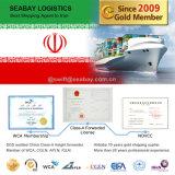 Transitário superior de China a Irã/Bandar Abbas/Tehran/Bandar Bushehr