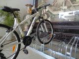 Превосходный Rust-Proof гальванизированный шкаф Bike самое лучшее 4 пола