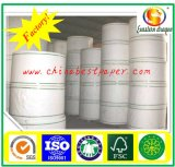 325g White Coated Cup Base Paper