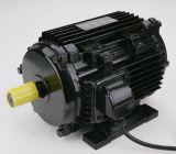 Motor trifásico de alumínio de alta tensão para o ventilador axial ao ar livre