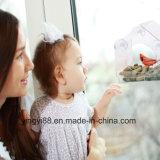علاوة نوعية أكريليكيّ نافذة عصفور مغذية مع [درين هول]