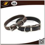 Le rose Shinny le collier en cuir de chats pour les accessoires d'animal familier (HJ7108)