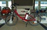 E-Bicicletta del CE En15194 dell'importatore 26 pollici con la cremagliera posteriore