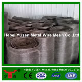 Feito em China 304 Stainless Filter Mesh