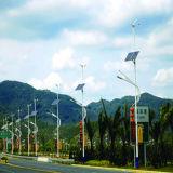 30W de LEIDENE Geïntegreerdee 60W ZonneStraatlantaarn van het Zonnepaneel met Ce