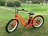 Bici elettrica della strada che il motore elettrico della bici va in bicicletta