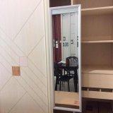 Spiegel van de Slaapkamer van de Hardware van de garderobe de Glijdende