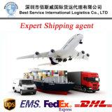 Anweisungs-Eilagens (DHL, UPS, Federal Express, TNT) DHL-Agens-Service