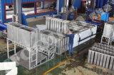 Focusun Block-Speiseeiszubereitung-Hersteller-Pflanze der neuen Technologie-10tpd