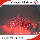 빨간색 5V 램프를 가진 반짝임 점화 LED 끈