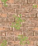 Het mooie Document van de Muur van de Stijl van het Land 3D Schuimende (D131103)