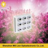 La PANNOCCHIA idroponica dell'interno LED della fioritura di Veg delle piante coltiva 1800W chiaro