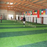 Costruzione dell'interno prefabbricata di gioco del calcio delle strutture d'acciaio di vendita calda