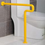 Antibacteriële Leuningen van de Staven van het Gewaad van het toilet de Nylon voor Gehandicapten