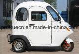 Tricycle électrique de pouvoir vert avec le corps fermé
