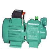 流水か下水または伝導または排水または磁気または化学薬品または周辺装置またはルートまたは長いシャフトの井戸またはRotoryまたは軸流れまたは/Waterの混合された流れまたは多段式または酸の循環またはハンドポンプ